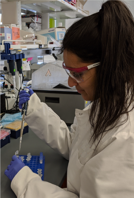 Feria Ladha in full laboratory gear pipetting at her bench